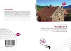 Buchcover von Bishopstoke