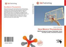 Couverture de New Mexico Thunderbirds