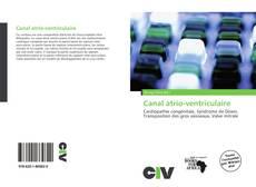 Bookcover of Canal atrio-ventriculaire
