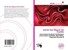 Portada del libro de Adrián San Miguel del Castillo