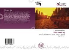 Capa do livro de Morant Bay