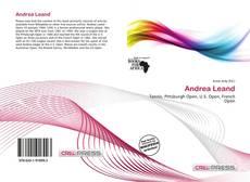 Capa do livro de Andrea Leand