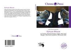 Bookcover of Sylvain Blouin