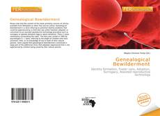 Bookcover of Genealogical Bewilderment