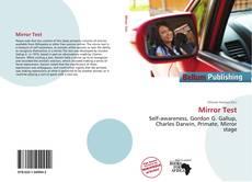 Mirror Test的封面