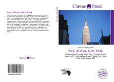 Обложка New Albion, New York