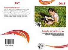 Bookcover of Caledonian Antisyzygy