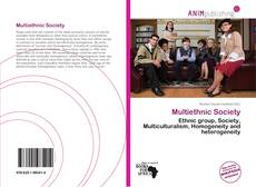 Capa do livro de Multiethnic Society