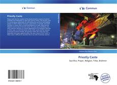 Bookcover of Priestly Caste