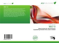 Bookcover of WEC 13