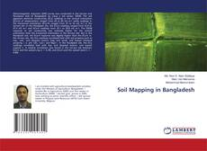 Bookcover of Soil Mapping in Bangladesh