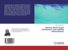 Bookcover of Hormuz Strait (wave simulations and satellite observations)