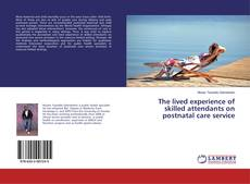 Bookcover of The lived experience of skilled attendants on postnatal care service