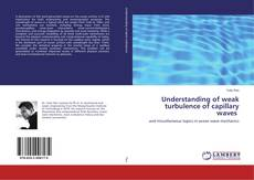 Bookcover of Understanding of weak turbulence of capillary waves