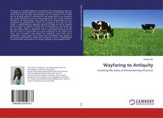 Bookcover of Wayfaring to Antiquity
