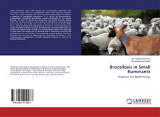 Brucellosis in Small Ruminants的封面