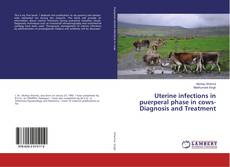 Bookcover of Uterine infections in puerperal phase in cows-Diagnosis and Treatment