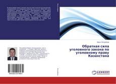 Bookcover of Обратная сила уголовного закона по уголовному праву Казахстана