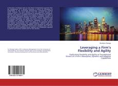 Bookcover of Leveraging a Firm's Flexibility and Agility