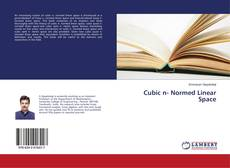 Bookcover of Cubic n- Normed Linear Space