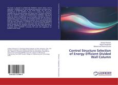 Capa do livro de Control Structure Selection of Energy Efficient Divided Wall Column