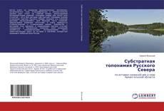 Субстратная топонимия Русского Севера kitap kapağı
