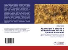 Bookcover of Адаптация к засухе и свертывание листа у яровой пшеницы