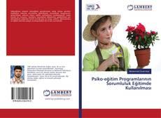 Psiko-eğitim Programlarının Sorumluluk Eğitimde Kullanılması kitap kapağı