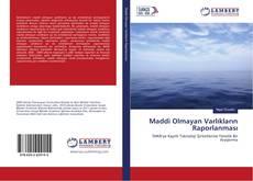Maddi Olmayan Varlıkların Raporlanması kitap kapağı