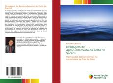 Capa do livro de Dragagem de Aprofundamento do Porto de Santos