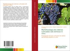 Buchcover von Morfofisiologia de videiras cultivadas sob estresse in vitro