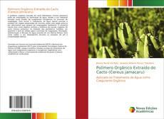 Обложка Polímero Orgânico Extraído do Cacto (Cereus jamacaru)