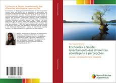Portada del libro de Enchentes e Saúde: levantamento das diferentes abordagens e percepções