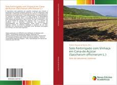 Обложка Solo Fertirrigado com Vinhaça em Cana-de-Açúcar (Saccharum officinarum L.)