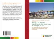 Copertina di Projeção de impactos macroeconômicos nas praças de pedágio: BR-101