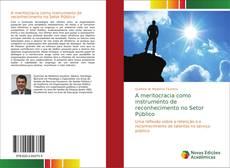 Capa do livro de A meritocracia como instrumento de reconhecimento no Setor Público