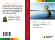 Capa do livro de Remediação Ambiental por meio de Redução Química In-Situ (ISCR)