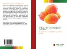 Bookcover of Indução de Cristalização de Açúcares