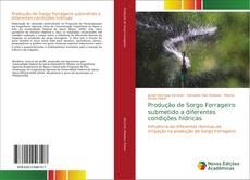 Copertina di Produção de Sorgo Forrageiro submetido a diferentes condições hídricas