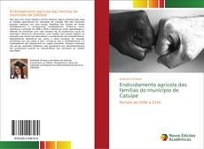 Bookcover of Endividamento agrícola das famílias do município de Catuípe