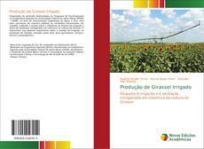 Buchcover von Produção de Girassol Irrigado