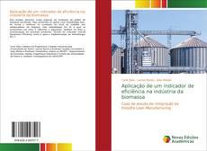 Aplicação de um indicador de eficiência na indústria da biomassa kitap kapağı