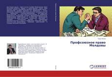 Capa do livro de Профсоюзное право Молдовы