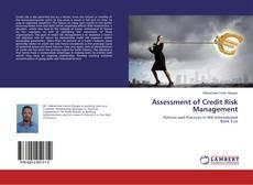 Copertina di Assessment of Credit Risk Management