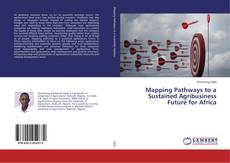 Couverture de Mapping Pathways to a Sustained Agribusiness Future for Africa