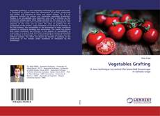 Bookcover of Vegetables Grafting