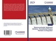 Rezervuarlarda Sediment Birikimi, Temizleme/Yıkama Yöntem ve Koşulları kitap kapağı