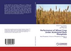 Bookcover of Performance of Wheat Crop Under Acidulated Rock Phosphate
