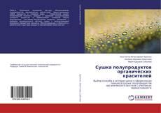 Bookcover of Сушка полупродуктов органических красителей