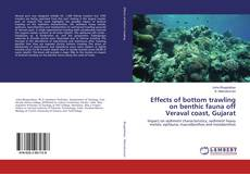 Effects of bottom trawling on benthic fauna off Veraval coast, Gujarat的封面